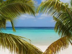 Туры на Маврикий, Отдых на Маврикии, Свадебные туры на Маврикий